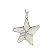 Sterling Silver Starfish Shell Pendant